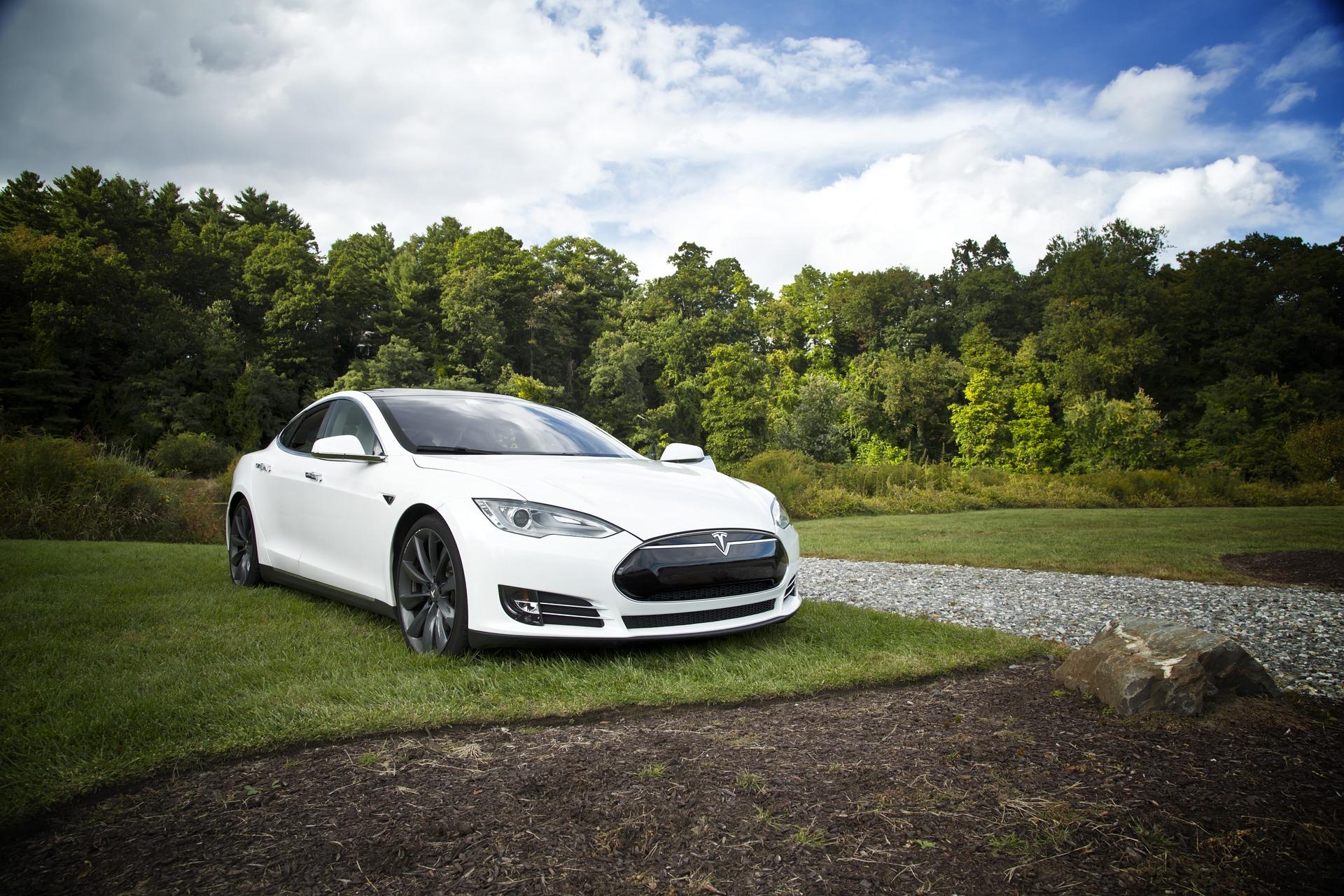 Witte Tesla in natuuromgeving