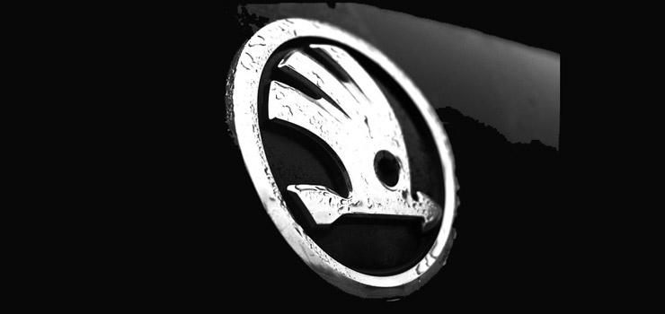 Zilveren Skoda logo